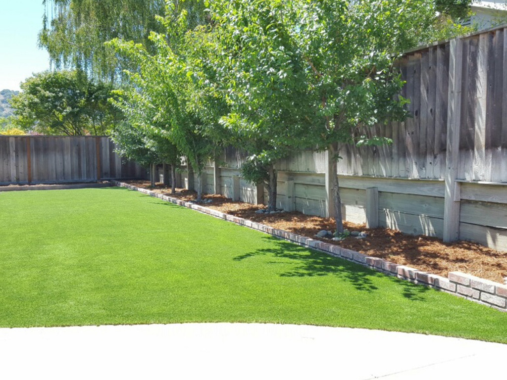 Backyard landscaping ideas new mexico for New landscaping ideas