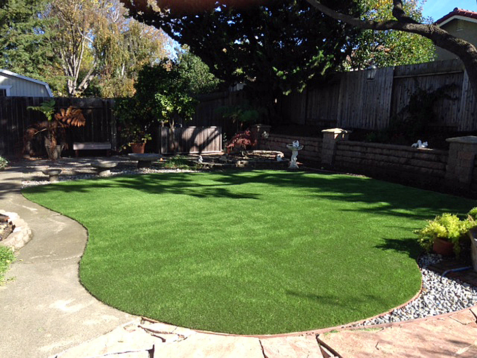 Synthetic grass cost elida new mexico garden ideas for Garden design fees