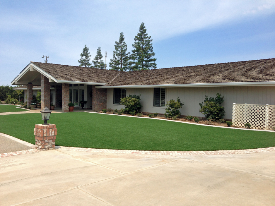 Synthetic grass cost truchas new mexico home and garden for Cost to landscape front yard