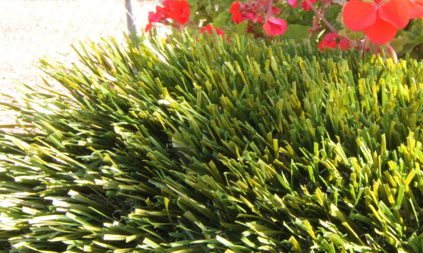 Artificial Grass Double S-61 Artificial Grass Albuquerque, New Mexico