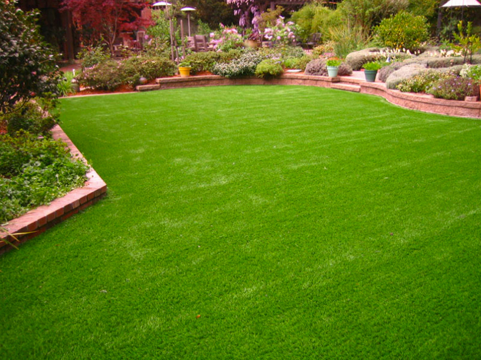 Artificial Turf Cost La Union, New Mexico Landscape Ideas ... on Artificial Turf Backyard Ideas id=42385